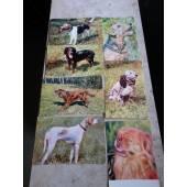 почтовые цветные открытки